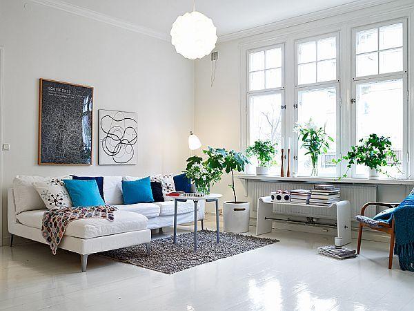 plantas-decorar-apartamento