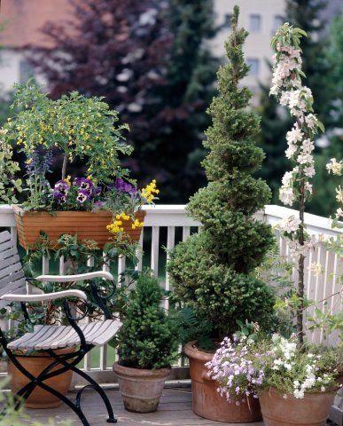 vasos-plantas-varanda-apartamento