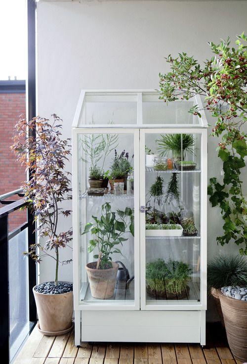 mini jardim apartamento:boas ideias para o jardimblog da ProprietárioDireto