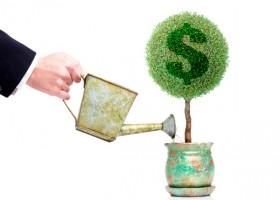 Como investir dinheiro?