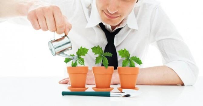 Homem de camisa branca e gravata preta com o mini regador prateado em mãos regando três plantinhas pequenas que estão dispostas lado a lado