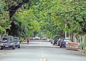 5 bairros com áreas verdes em SP